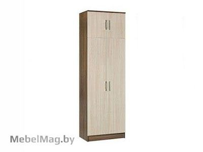 Шкаф 2х створчатый комбинированный Ясень - Машенька