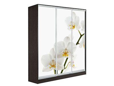 Оскар 3 Орхидея 2400 Венге