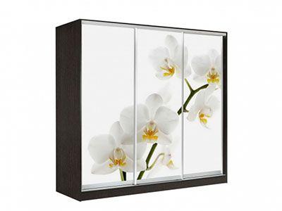Оскар 4 Орхидея 2400 Венге