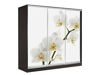 Оскар 4 Орхидея 2200 Венге