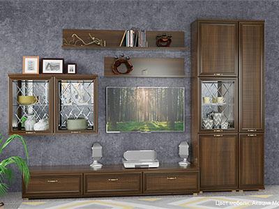 Гостиная Карина-1 - Акация Молдау
